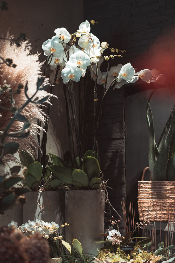 Fleuriste Landes - Histoire de Fleur - Damien Thuaud - Mariage
